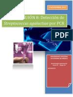 PCR final