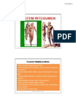Sistem Integumen.pdf