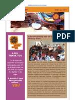Newsletter Q1-2013