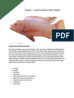 ikan talapia