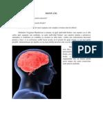 Accidentul vascular cerebral