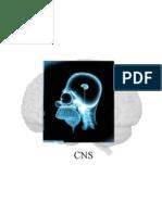 Central Nervous System ppt
