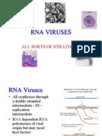 RNA virus