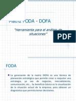 Matriz Foda y Bcg