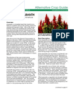 Amaranth Crop Guide