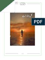 Wajahat Ali Abbasi-Kal Hamara Hai
