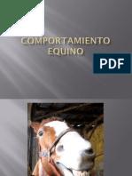 Comportamiento equino.pdf