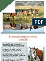 comportamiento_del_caballo.pdf