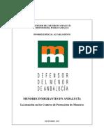 Def menor Andalucía 2003