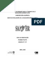4520924 SABER Caract Guia de Orientacion Prueba Piloto 20081