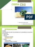 Calcosita (Flores, Sanchez)