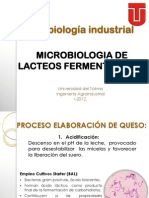LACTEOS FERMENTADOS