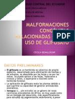 MALFORMACIONES CONGÉNITAS RELACIONADAS CON EL USO DE GLIFOSATO
