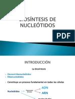 BIOSÍNTES.. ac nucleicos