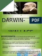 presentación darwin-wallace