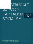 Struggle between Capitalism and Socialism