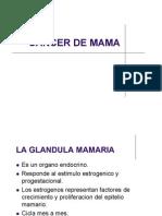 Cancer de Mama Web