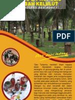 Flyer Syamille Madu & Propolis Lebah Kelulut