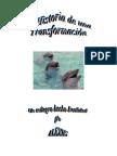 Alexiis - Historia de Una TransforMacIon