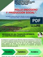 Desarrollo Endogeno y Produccion Social 2013
