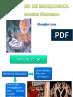 genoma humanoo