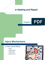 Chapter 5 Tissue Healing and Wound Care