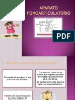 Aparato fonoarticulatorio