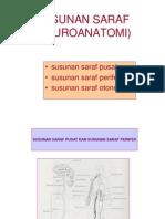 SUSUNAN SARAF (NEUROANATOMI).ppt
