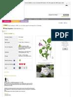 Pfarg Usepfr Plant Aspx