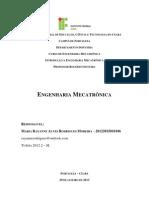 IEMEC 01 MariaRayanneARM b.doc