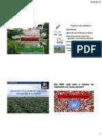 Herbicidas.pdf
