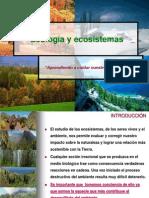 Los Ecosistemas Relaciones Troficas Ya Considerado
