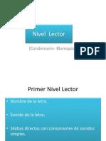 Nivel Lector