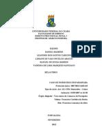 relatório do processo