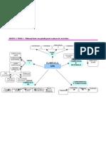 Modul I - Tema 1- Harta Conceptuala