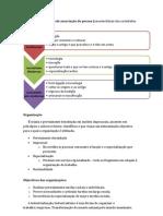 Comportamento Organizacional - Resumos 12.13