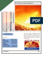 aditya birla management control system