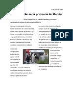 Clara Escolano, Redacción de noticias. El Alquimista Impaciente.