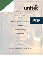 Informe Mineria en Honduras y Centroamerica