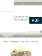U2_ObservacionDescripcion