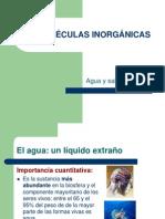 biomolculas-inorgnicas-1198277713665938-4