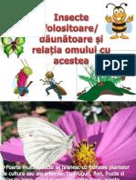 Insecte Daunatoare Si Folositoare