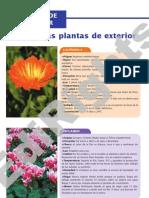 PExterior IV