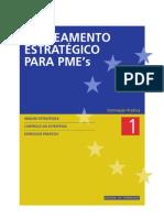 25831 Plan Estrat PMEs