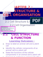 2.1 - Cell Function