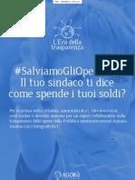 Report Open Data Pubblica Amministrazione Italiana