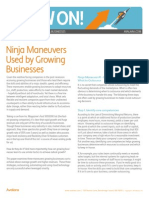 Ninja Maneuvers Used by Growing Businesses