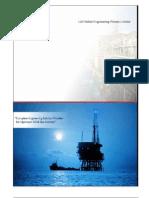 CAPABILITY%20DL&TOCUMENT%20FOR%20PROCESS%20PLATFORMS.pdf