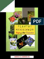 Plantas Medicinales -Riesgos y Usos terapeuticos-