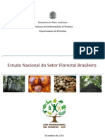 Estudo Nacional Do Setor Florestal Brasileiro
